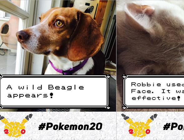 Pokémon lanza la aplicación Pokémon Photo Booth