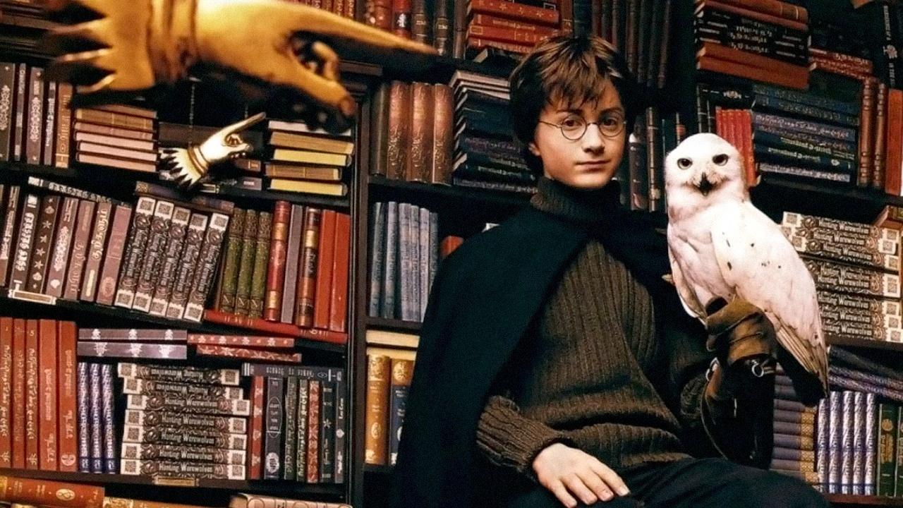 No veremos lechuzas en Harry Potter and the Cursed Child