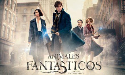Revelados nuevos detalles de la secuela de Animales Fantásticos